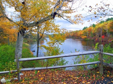 Fall colors on the Upper Hudson River in North Creek photo credit: Greg Klingler