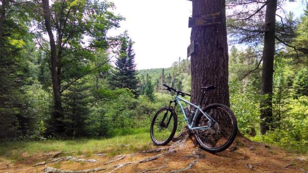 Mountain Biking in Wilcox Lake Wild Forest