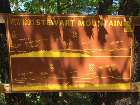 stewart1