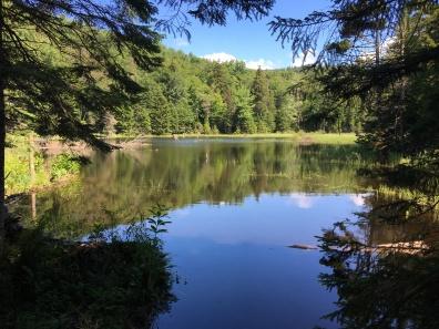 Hour Pond 3 - Beaver Pond
