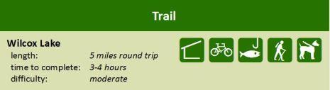 wilcox_trail