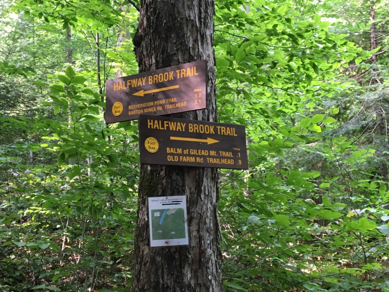 Intersection with Halfway Brook Trail