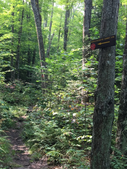 Trail sign for Balm of Gilead