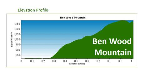 ben wood elevation