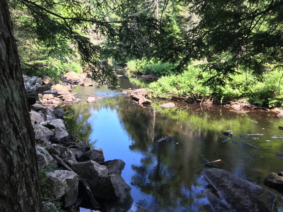 stewart creek 2