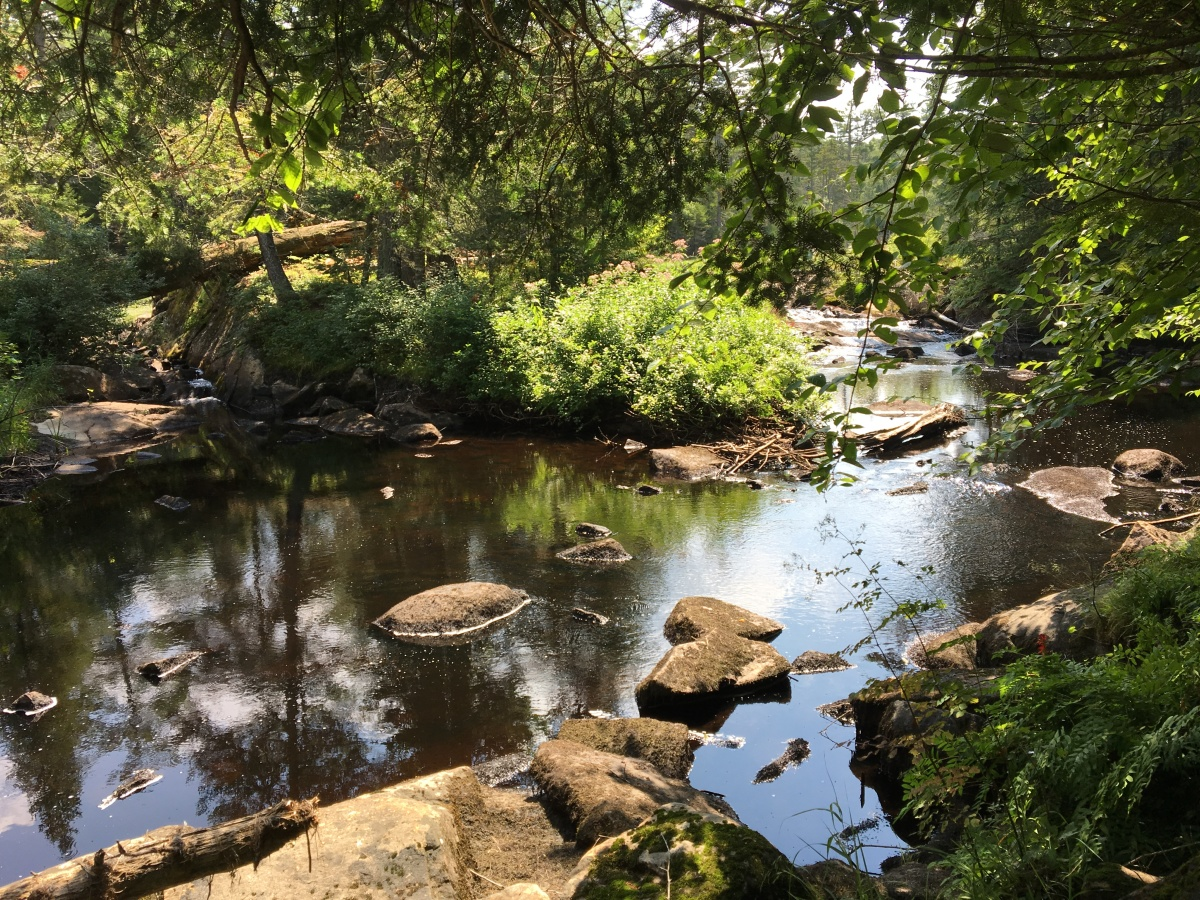 stewart creek 3